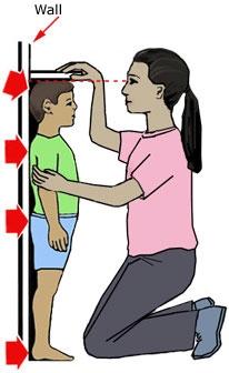 专家讲解骨龄与身高的关系