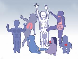 了解骨骼结构原来这么有趣!不要小看孩子的动手能力噢~